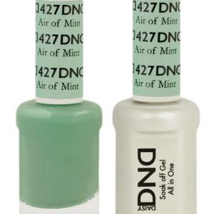 DSD427.jpg